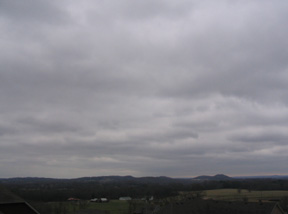 Gray winter day in Tennessee