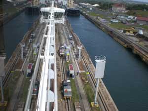 cruise412